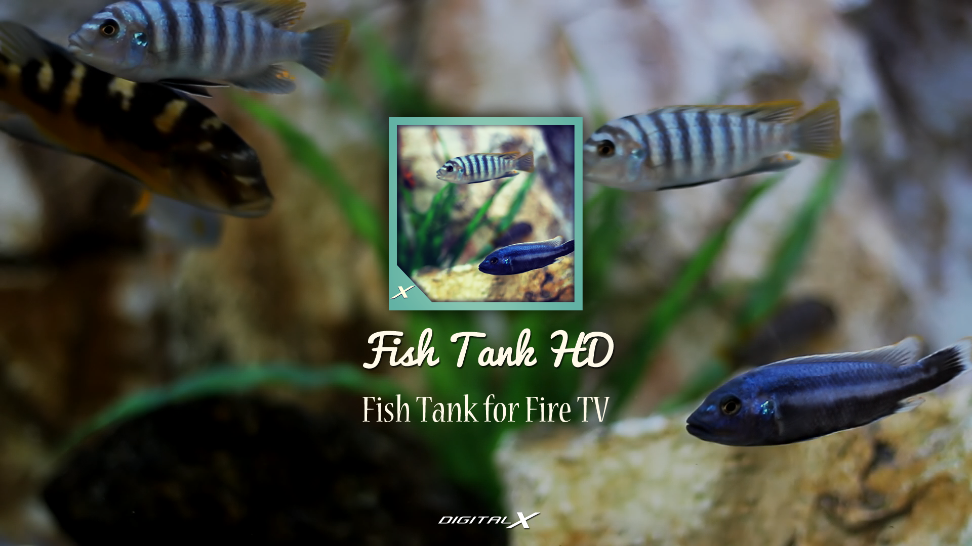 Fish tank for your tv -  The App And Set Your Mood To Blend The App With The Ambience Frames And Color Effects Are Installed Created To Make The Aquarium Even More Realistic