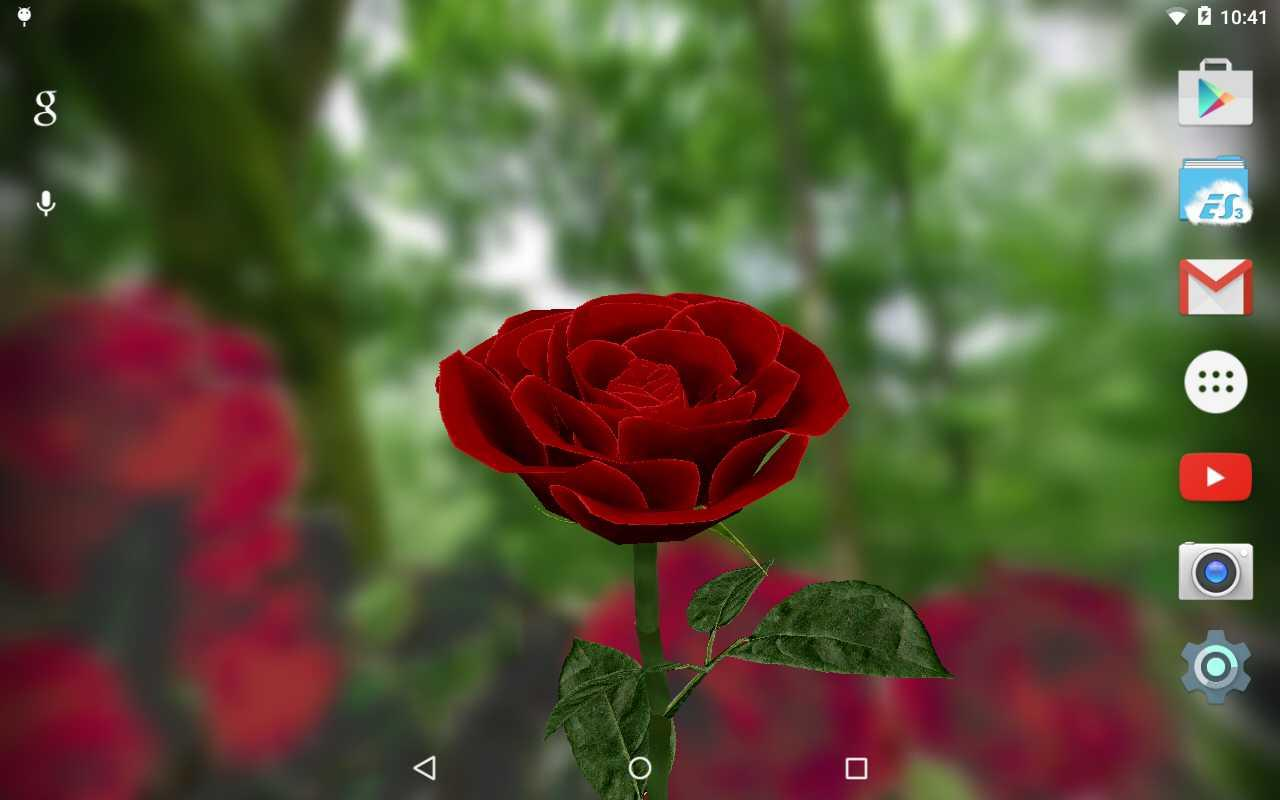 3d Rose Live Wallpaper App Ranking And Store Data App Annie