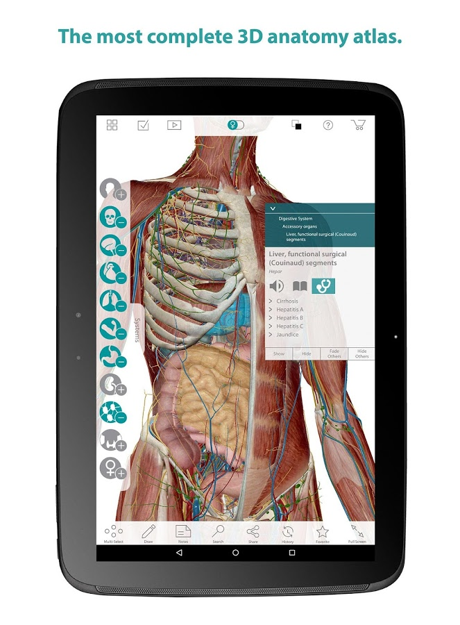 Human Anatomy Atlas App Ranking And Store Data App Annie