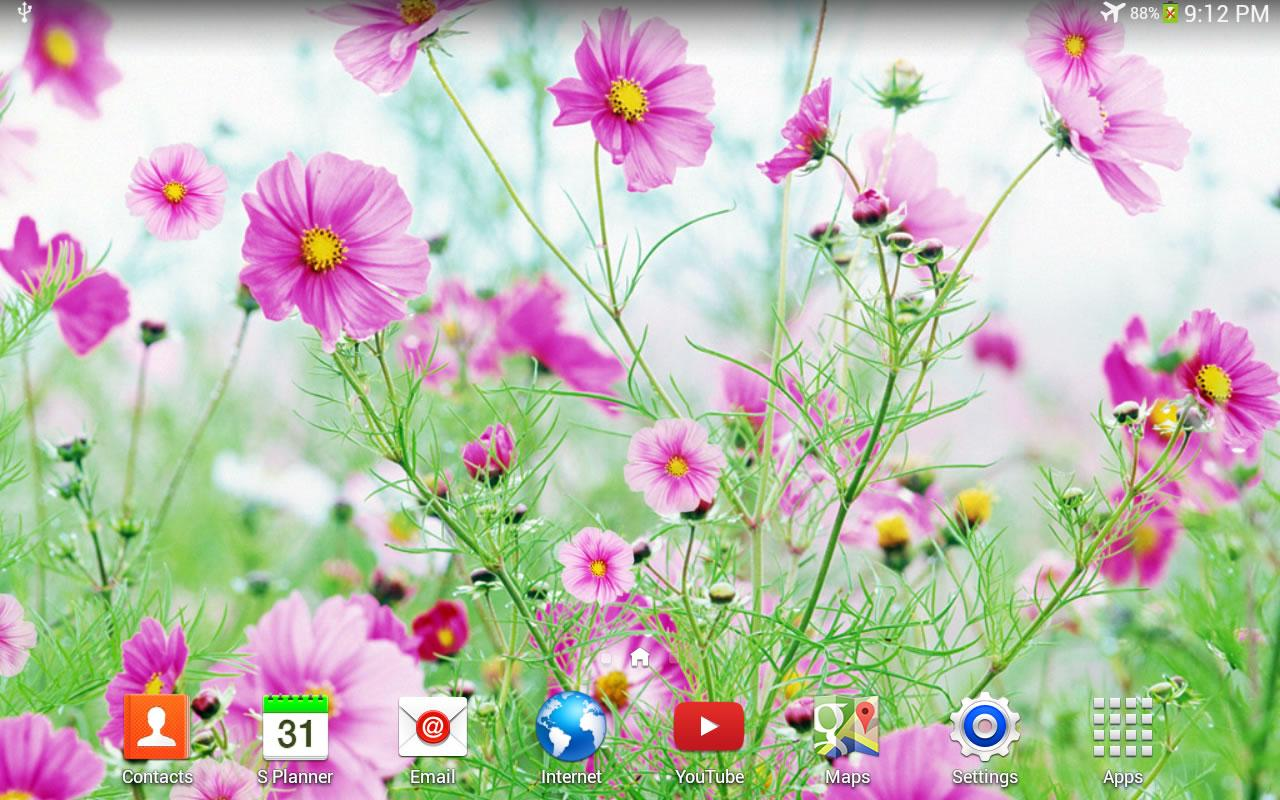 Sweet Flowers Live Wallpaper App Ranking And Store Data App Annie