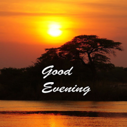good evening images app ranking and store data app annie