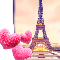 Cute Paris Live Wallpaper App Ranking And Store Data App Annie