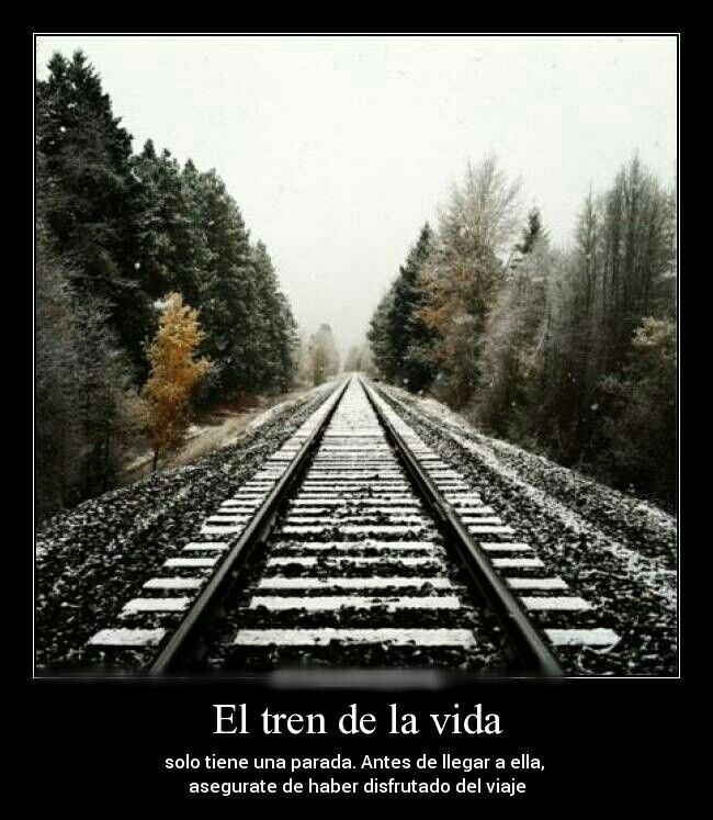 Imagenes Y Frases Tristes App Ranking And Store Data App Annie