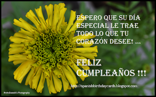 Spanish birthday cards app ranking and store data app annie app description m4hsunfo