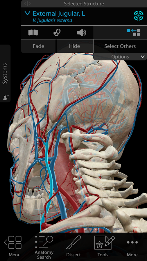 Human Anatomy Atlas 2018 Complete 3d Human Body App Ranking And