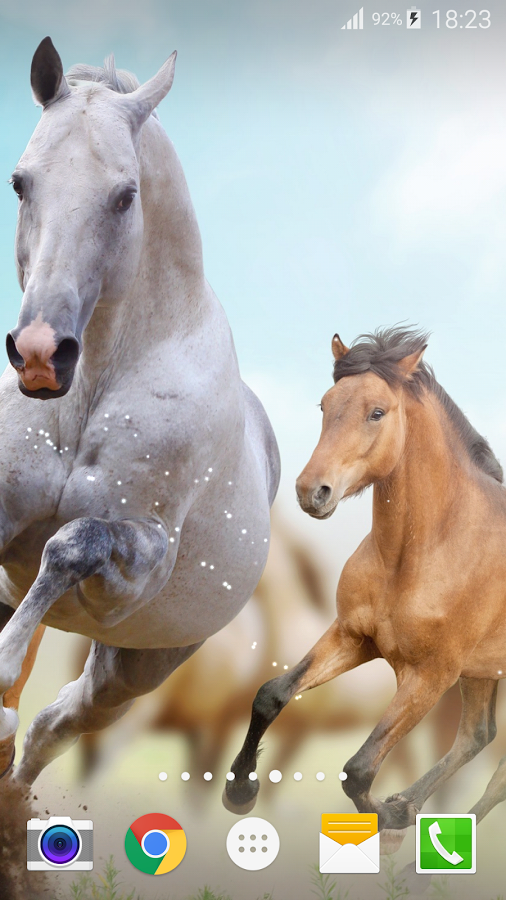 No More Waiting To Download Dynamic Wallpapers Horses Or Enjoy The White Horse Wallpaper Horse Wallpaper On Your Screen Best Wallpapers And Free Screen