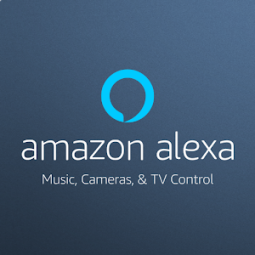 Amazon Music App Ranking and Store Data | App Annie