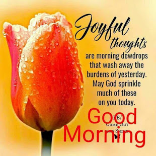 Good morning messages and images Gif App Ranking and Store
