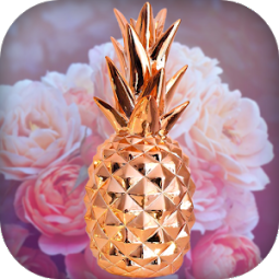 Rose Gold Marble Wallpapers App Ranking And Store Data App