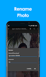Gallery 2019 App Ranking and Store Data | App Annie