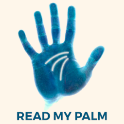 Palm Reader Scanner Free Palmistry Hand Reading App Ranking And Store Data App Annie