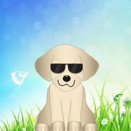 Puppy Emoji Stickers for iMessage App Ranking and Store Data | App Annie