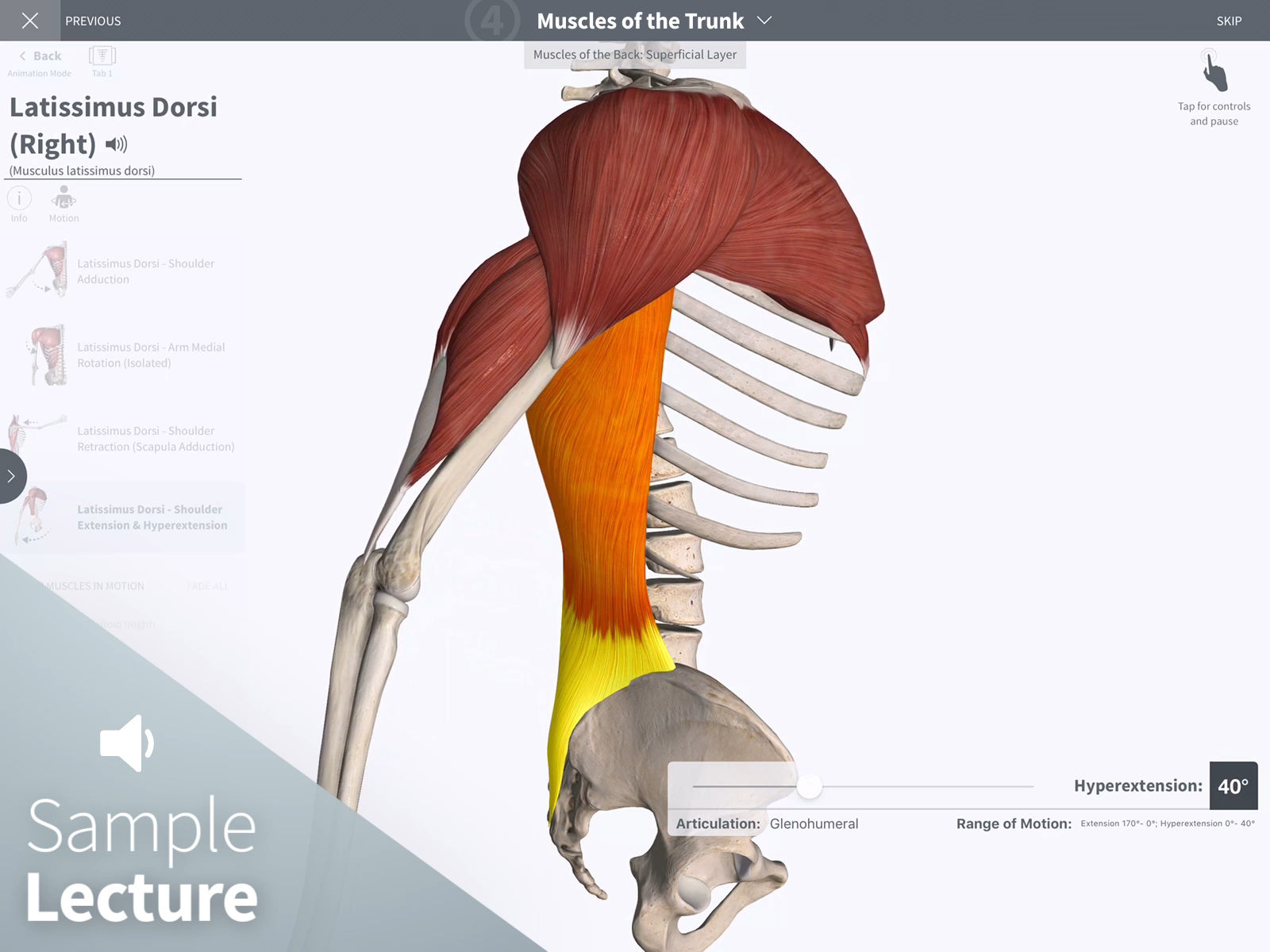 Essential Undergrad Anatomy by 3D4Medical App Ranking and Store Data ...