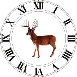 Best Hunting Times - iOS Store App Ranking and App Store Stats