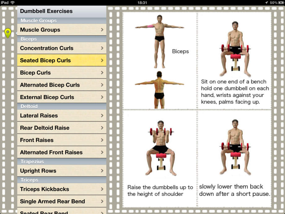 list of dumbbell exercises by muscle group dumbbell - 480×360