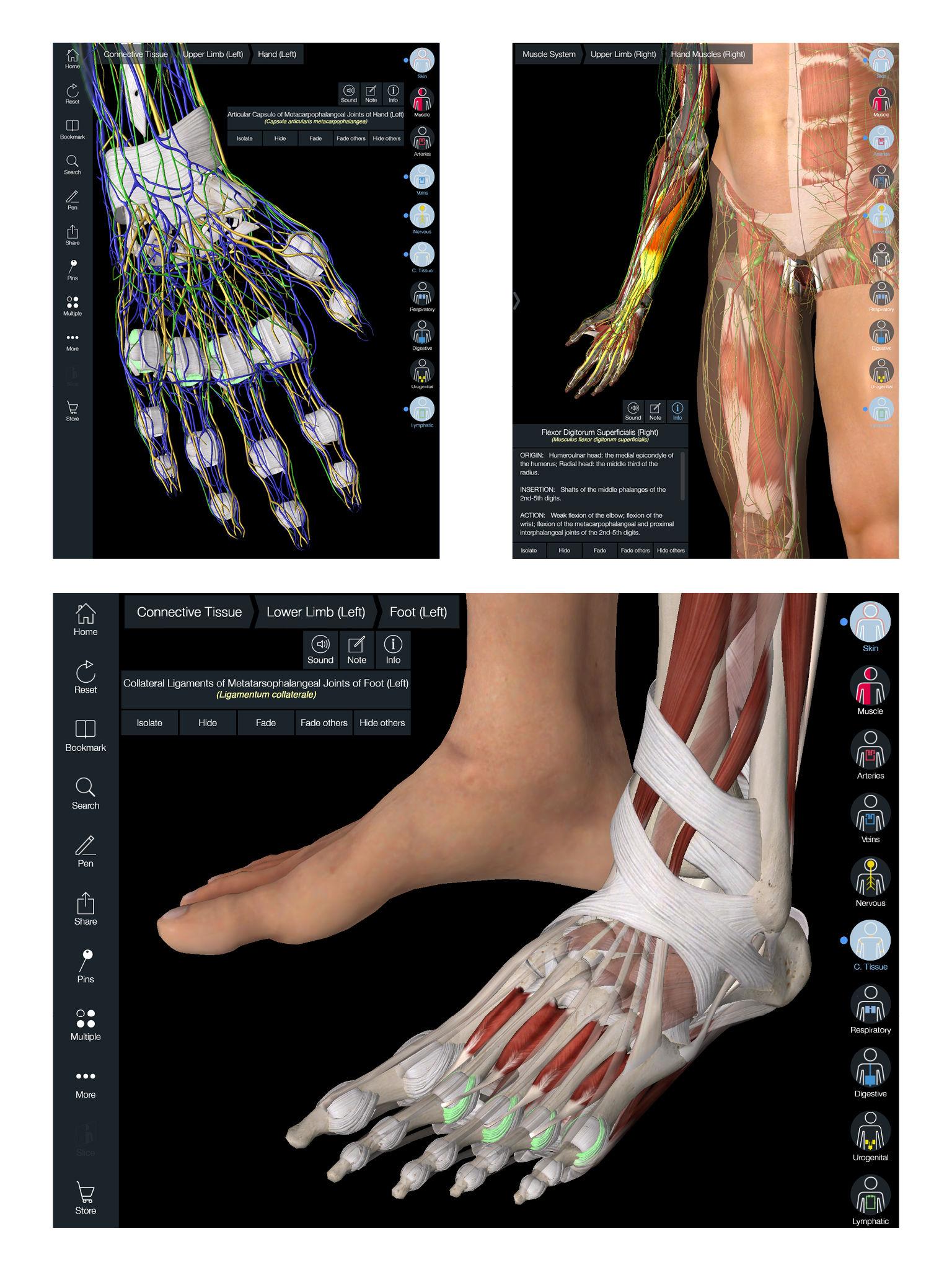 Essential Anatomy 5 App-Ranking und Store-Daten | App Annie