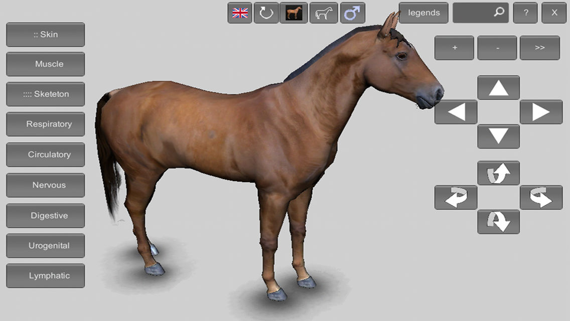 3D Horse Anatomy Software App Ranking and Store Data | App Annie