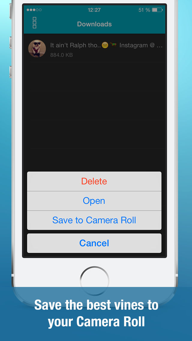 Video Downloader for Vine (Save unlimited vines to your