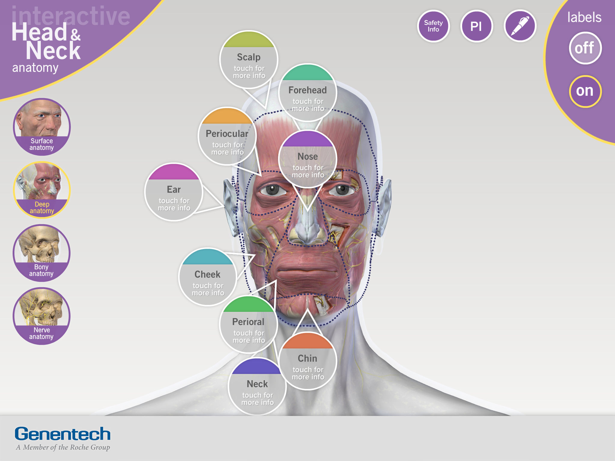 3D Facial Anatomy Tool App Ranking and Store Data | App Annie