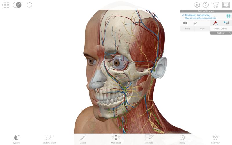 Human Anatomy Atlas 2019 App Ranking and Store Data | App Annie